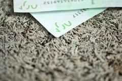 在白色背景隔绝的100张欧洲钞票 图库摄影