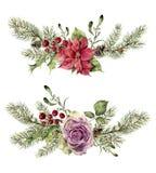 在白色背景隔绝的水彩冬天花卉元素 葡萄酒样式设置与圣诞树分支,上升了 库存例证
