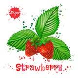 在白色背景隔绝的水彩草莓 图库摄影