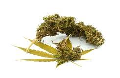 在白色背景隔绝的医疗大麻 治疗和 免版税图库摄影