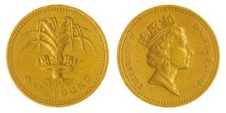 在白色背景隔绝的1磅1985硬币,大英国 图库摄影