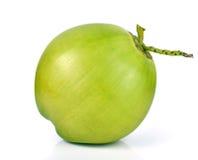 在白色背景隔绝的绿色椰子果子 图库摄影