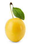 在白色背景隔绝的黄色樱桃李子 库存图片