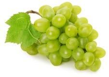 在白色背景隔绝的绿色葡萄 免版税图库摄影