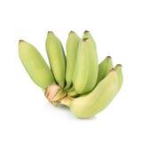 在白色背景隔绝的绿色香蕉 库存图片