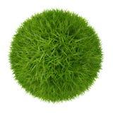 在白色背景隔绝的绿草球 库存图片