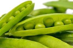 在白色背景隔绝的绿豆荚  绿色,成熟,新鲜蔬菜 豆类 免版税图库摄影