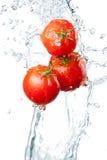 在白色ba隔绝的水飞溅的三个新鲜的红色蕃茄 库存图片