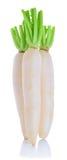 在白色背景隔绝的Daikon萝卜 免版税库存图片