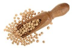 在白色背景顶视图隔绝的木瓢的大豆 库存图片