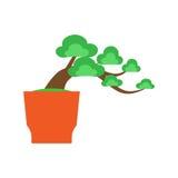 在白色背景,传染媒介的盆景树 库存图片