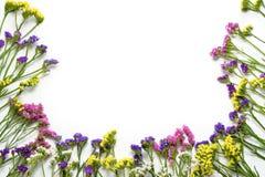 在白色背景,底下边界的Colorfull野花 平的位置,顶视图 库存照片