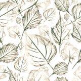 在白色背景,无缝的样式的明亮的秋叶 免版税库存图片