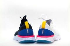 在白色背景,背面图的深蓝体育鞋子 库存照片