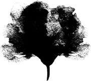 在白色背景,设计问候的手拉的花卉传染媒介图画的鸦片花图表例证 库存图片