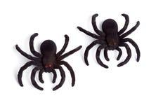 在白色背景-玩具蜘蛛,顶视图-隔绝的万圣夜 免版税库存照片