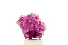 在白色背景-紫罗兰色VA的美丽的紫色的晶族特写镜头 免版税库存照片