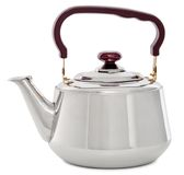 在白色背景/茶壶隔绝的小金属水壶与 免版税库存照片