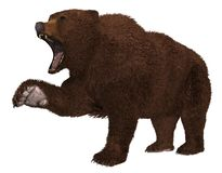 在白色背景3d例证隔绝的北美灰熊 皇族释放例证