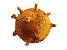 在白色背景3d翻译隔绝的橙色病毒或细菌分子微生物 库存例证