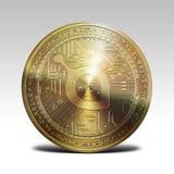 在白色背景3d翻译隔绝的金黄siacoin硬币 免版税库存图片