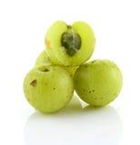 在白色背景isoled的印地安鹅莓 免版税库存照片