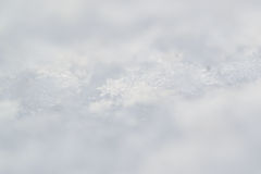 在白色自然的新鲜的冬天雪花 免版税库存照片