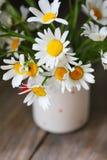在白色花瓶的春黄菊在木板 免版税图库摄影
