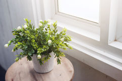 在白色花盆的白花在窗口附近的木桌上 免版税图库摄影