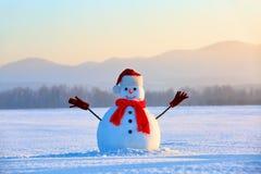 在白色蓬松织地不很细雪单独雪人 库存照片