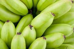 在白色被隔绝的背景健康Pisang Mas香蕉果子食物的绿色未加工的金黄香蕉 免版税库存照片