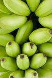 在白色被隔绝的背景健康Pisang Mas香蕉果子食物的绿色未加工的金黄香蕉 免版税库存图片