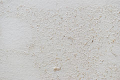 在白色被阻止的墙壁背景的模子纹理 图库摄影
