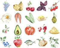 在白色设置的水彩健康食品 向量例证