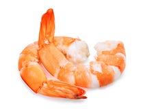 在白色隔绝的两只虾 免版税图库摄影