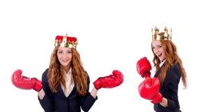 在白色隔绝的女王/王后拳击手女实业家 图库摄影