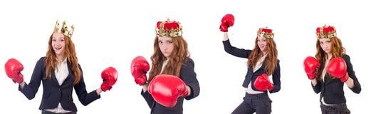 在白色隔绝的女王/王后拳击手女实业家 库存照片
