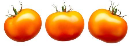 在白色隔绝的小组红色蕃茄 图库摄影