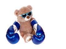 在白色隔绝的拳击手套的玩具熊 拳击手一点 免版税图库摄影