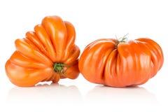 在白色隔绝的新未加工的蕃茄牛肉蕃茄品种 免版税库存图片