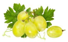 在白色隔绝的新鲜的葡萄 库存照片