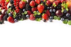 在白色隔绝的混合莓果 莓果和果子与拷贝空间文本的 黑蓝色和红色食物 成熟黑莓, blueberr 免版税库存图片