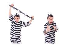在白色隔绝的滑稽的证明有罪 免版税库存图片
