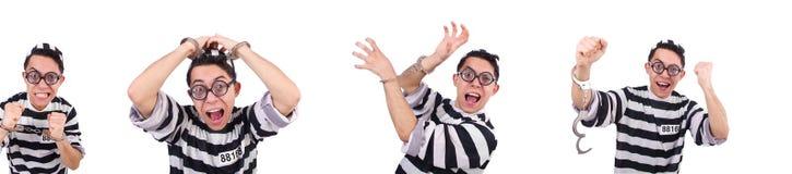 在白色隔绝的滑稽的证明有罪 免版税库存照片