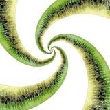 在白色隔绝的猕猴桃抽象纹理分数维螺旋 猕猴桃抽象绿色黑果子分数维作用 食物难以置信的背景 免版税库存图片