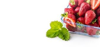 在白色隔绝的玻璃碗的新鲜的成熟草莓 免版税库存照片