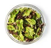 在白色隔绝的碗的蔬菜沙拉 库存图片