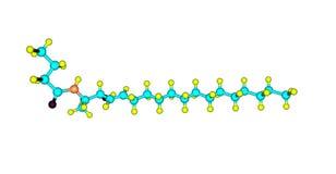 在白色隔绝的神经酰胺分子结构 皇族释放例证