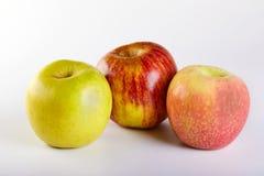 在白色隔绝的红色苹果,绿色和桃红色苹果 库存照片