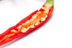 在白色隔绝的红色辣椒幻灯片  免版税图库摄影